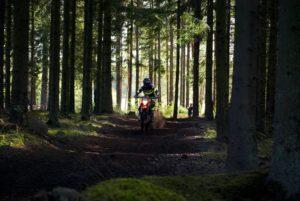 E Dirt Bike In Forest