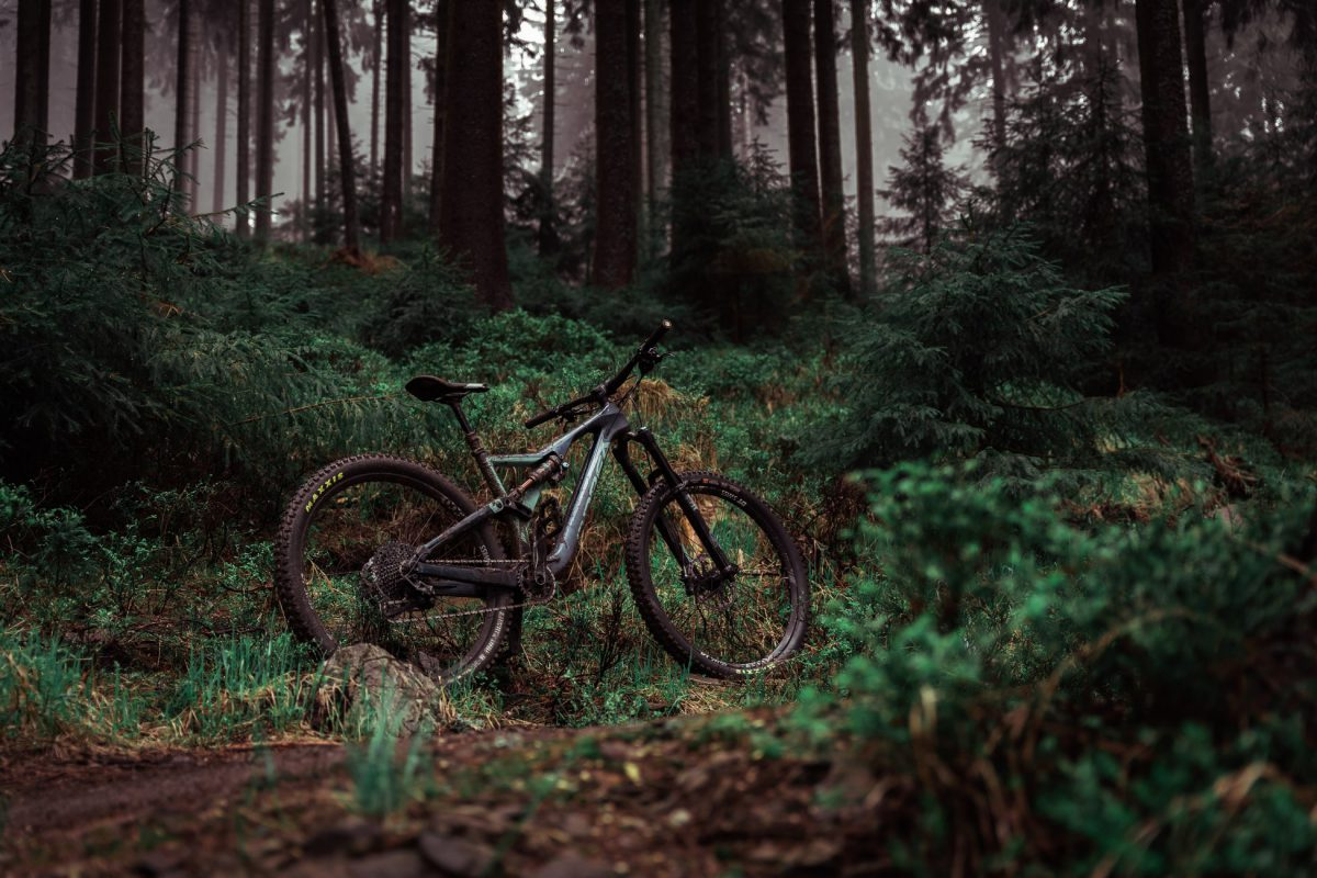 Tame The Outside: Finding The Best Electric Mountain Bike